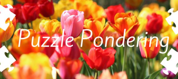 puzzle pondering blog post